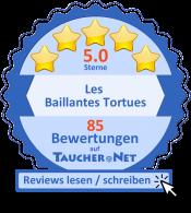 Tauchen.net